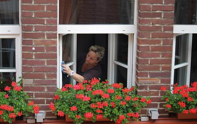 mytí oken