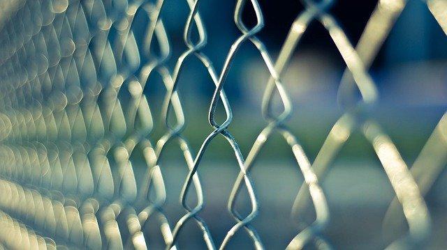 plot z pletiva
